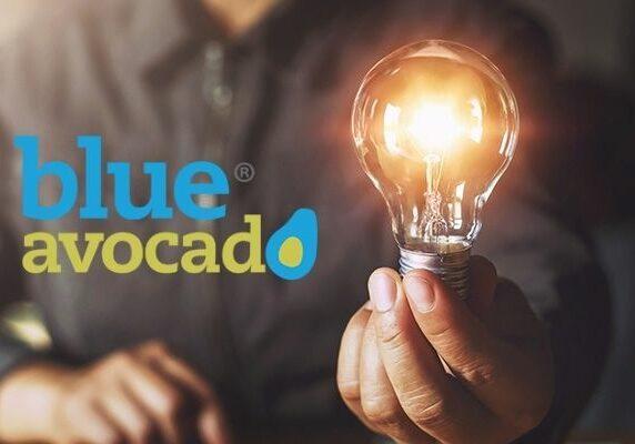 Blue avocado